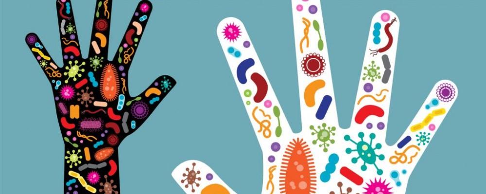Microbiomul – ecosistemul din corpul nostru